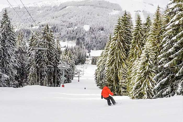 The tree lined pistes running into Les Gets