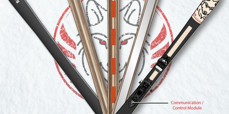 verispellis skis control and communication module