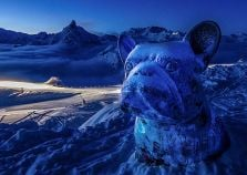 Snow sculpture of a dog in Courchevel